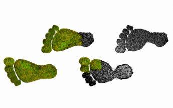 Huella de carbono y cambio climático: qué es, cómo calcularla y qué hacer para reducirla